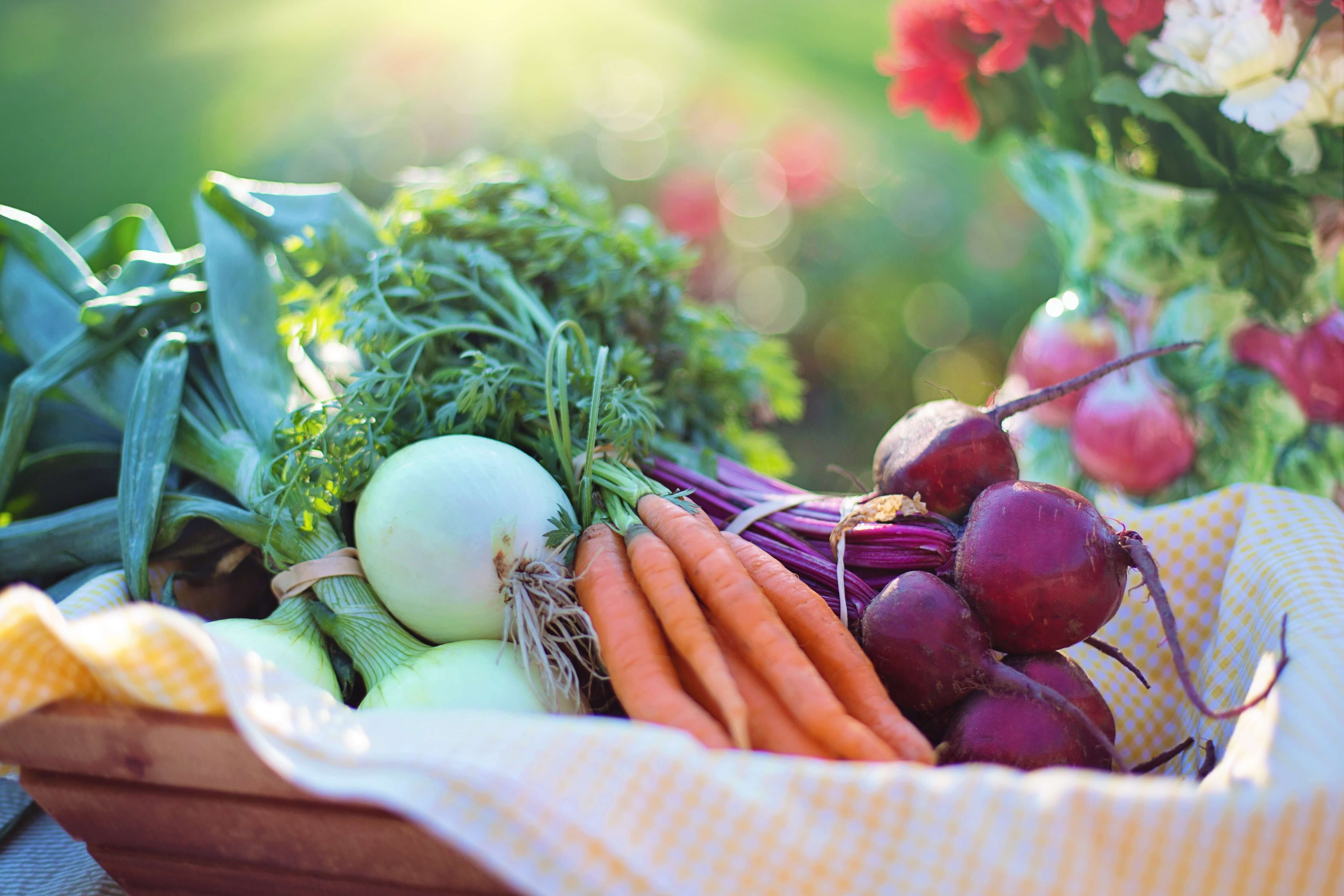 sustainably-grown-agriculture-basket